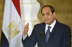 Ai Cập công bố danh sách sơ bộ ứng cử viên cho bầu cử tổng thống