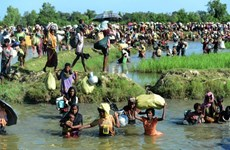 Tám nước thành viên LHQ đề nghị HĐBA triệu tập họp về Myanmar