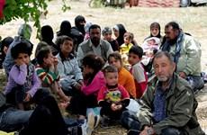 Thổ Nhĩ Kỳ: Thành phố Istanbul ngừng tiếp nhận người tị nạn Syria