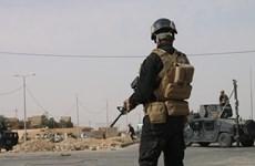 Iraq: Tổ chức khủng bố IS sát hại 27 chiến binh ủng hộ chính phủ