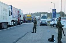 Ukraine bắt giữ đối tượng cầm đầu mạng lưới tin tặc Avalanche