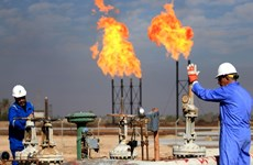 Giá dầu trên thế giới nhất loạt đi xuống do đồng USD mạnh lên