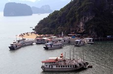 Quảng Ninh: Đình chỉ hoạt động ba tàu du lịch trên vịnh Hạ Long