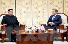 Mỹ-Hàn-Triều có thể tổ chức cuộc gặp thượng đỉnh ba bên vào mùa Hè