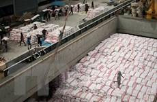 Thái Lan là nước xuất khẩu gạo lớn nhất thế giới trong quý 1
