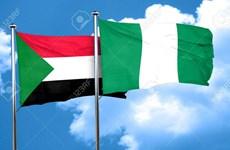 Phát hiện thi thể một nhà ngoại giao Nigeria nghi bị ám sát tại Sudan