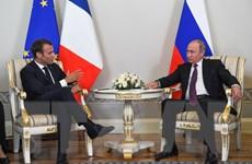 Tổng thống Nga và người đồng cấp Pháp thảo luận nhiều vấn đề quốc tế