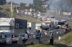 """Brazil hạ giá nhiên liệu để """"hạ nhiệt"""" đình công của các lái xe tải"""