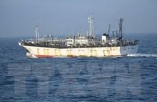 Hàn Quốc phá hủy tàu cá Trung Quốc vì đánh bắt bất hợp pháp