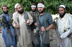 Gửi thông điệp trên WhatsApp, Taliban từ chối gia hạn lệnh ngừng bắn