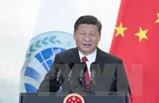 Chủ tịch Trung Quốc: Bán đảo Triều Tiên sẽ hòa bình, ổn định