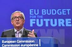 Ủy ban châu Âu hy vọng Ankara vẫn là đối tác tích cực sau bầu cử