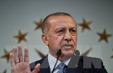 Chiến thắng ít vị ngọt của Tổng thống Thổ Nhĩ Kỳ Tayyip Erdogan