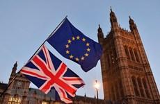 Vấn đề Brexit: Giới chức Anh bác nguy cơ nhiều bộ trưởng sẽ từ chức
