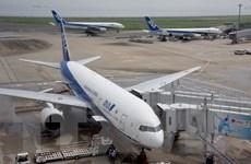 Nhật Bản: Hãng hàng không ANA hủy thêm hơn 300 chuyến bay nội địa