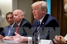 Tổng thống Mỹ Donald Trump nhấn mạnh khả năng hợp tác với Nga