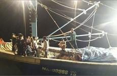 Nghệ An: Khẩn trương tìm kiếm thuyền viên mất tích trên biển