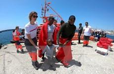 Vấn đề người di cư: Tây Ban Nha cứu gần 400 người trên biển