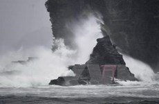 Cơn bão Shanshan sắp đổ bộ miền Đông Bắc Nhật Bản gây mưa to