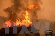 Cháy rừng khiến 21.000 người phải sơ tán tại bang California