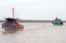 Vũng Tàu xác minh thông tin vụ tàu Hải Dương 19 đâm chìm một tàu cá