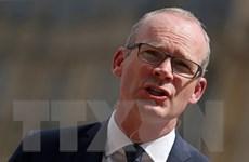 Ngoại trưởng Ireland: Khó có khả năng không đạt thỏa thuận Brexit