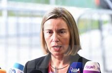 """Giới chức EU hối thúc các nước thành viên """"có trách nhiệm hơn"""""""