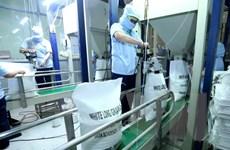Ai Cập sẽ nhập khẩu một triệu tấn gạo trắng của Việt Nam