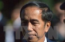 Chủ nhà Indonesia sẽ tham gia cuộc đua xin đăng cai Olympic 2032