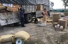 Thanh Hóa: Bắt ôtô tải vận chuyển sản phẩm động vật đã ôi thiu