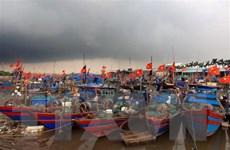 Bão số 5 sẽ đi vào vịnh Bắc Bộ và suy yếu dần thành áp thấp nhiệt đới