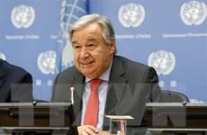 Liên hợp quốc phát động chiến lược mới để thanh niên đi tiên phong