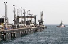 IEA: Các nước trong và ngoài OPEC tăng sản lượng khai thác dầu