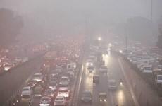 Ô nhiễm khói bụi ở Ấn Độ khiến hơn 1 triệu người tử vong mỗi năm