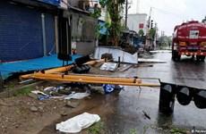 Đã có hơn 30 người thiệt mạng do bão Gaja hoành hành tại Ấn Độ