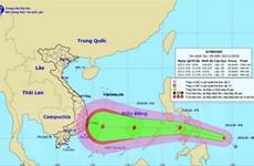 Miền Trung và Tây Nguyên khẩn trương ứng phó áp thấp nhiệt đới