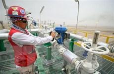 Giá dầu trên thị trường thế giới giảm trước thềm cuộc họp của OPEC