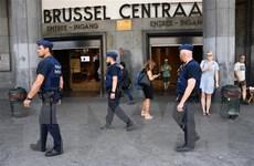 """Bỉ: 70 người bị bắt giữ trong cuộc biểu tình """"Áo vàng"""" ở Brussels"""