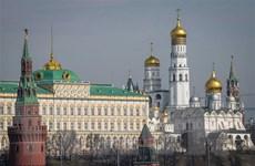 Điện Kremlin bác bỏ can thiệp trong cuộc bầu cử Tổng thống Mỹ