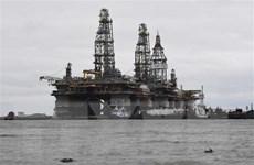 Giá dầu phục hồi nhờ dấu hiệu khá tích cực về nhu cầu