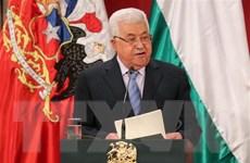 Hamas phản đối kế hoạch giải tán Hội đồng Lập pháp Palestine