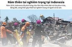 [Infographics] Một năm thiên tai nghiêm trọng tại Indonesia
