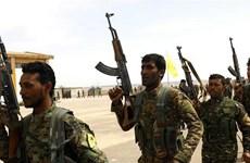 SDF bắt hơn 250 phần tử IS tìm cách bỏ trốn khỏi miền Đông Syria