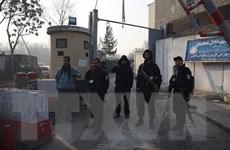 Afghanistan tiêu diệt gần 40 phiến quân Taliban trên khắp cả nước