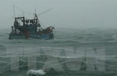 Sóng to gió lớn, công tác cứu hộ tàu cá ngư dân Cà Mau gặp khó khăn