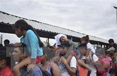 UNHCR: 100 người di cư mất tích sau khi tìm cách tị nạn ở Algeria