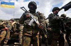 Ukraine tiếp nhận nhận gần 5.000 đơn vị vũ khí chế tạo trong nước