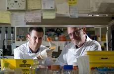 Australia: Phát triển công nghệ rút ngắn thời gian điều chế vắcxin