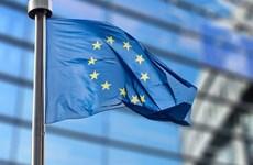 EU hối thúc các công ty Internet chống tin giả trước bầu cử