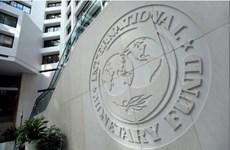 IMF nhất trí giải ngân khoản vay trị giá 2 tỷ USD cho Ai Cập